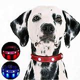 MASBRILL Handgefertigte LED Hundehalsband-USB aufladbare Wasserdichte leuchtende Edelstein leuchten Hundehalsband Nacht Sicherheit (M (für 24-66 lbs), Rot)