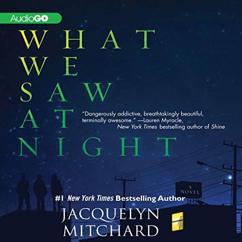 What We Saw at Night  Audiolibri