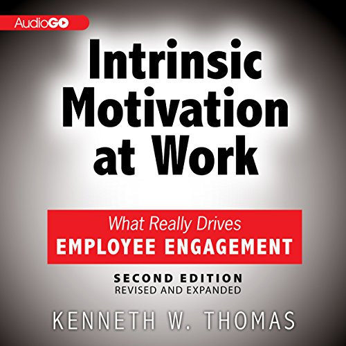Intrinsic Motivation at Work  Audiolibri