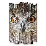 Kreative Feder Eule Designer Schlüsselbrett, Hakenleiste Landhaus Style, Shabby aus Holz 30x20cm, HSB077