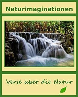 download Verfassungsgericht, Regierung