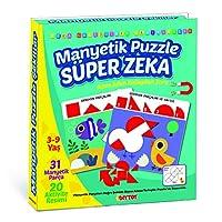 DiyToy Manyetik Puzzle Süper Zeka Oyunu