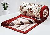 AURAVE Flowers & Stripes 1 Piece Cotton Reversible AC Dohar - Double, Peach