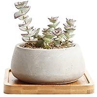 Rachel's 9CM Serie de Cemento Suculento Cactus Macetas Jardineros de Macetas Contenedores Cajas de Ventana Gran Ronda Con Bandeja de Bambú, Paquete de 1