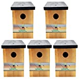 Home-x Bird Houses - Best Reviews Guide