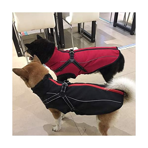 JunBo Dog Jacket with Harness Warm Coats and Jackets for Medium and Large Dogs 7