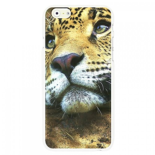 OnlineBestDigital - Animal Pattern Hardback Case / Housse pour Apple iPhone 6 Plus / 6S Plus (5.5)Smartphone - Tiger Leopard