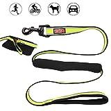 Hundeleine - Hunde Sicherheitsgurt für Auto - reflektierende grüne Nylon-Gurtband - Gepolsterte Doppelgriffe mit Auto-Sicherheitsgurt-Clip für große und mittlere pet Cat Hundetraining, Laufen und Auto-Reisen
