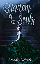 Harem of Souls: A Reverse Harem Romp (Stairway to Harem Book 4)