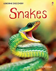 Snakes (Usborne Discovery)