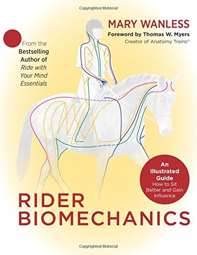 Rider Biomechanics: An Illustrated Guide | How to Sit Better and Gain Influence