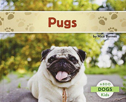 Pugs (Dogs)