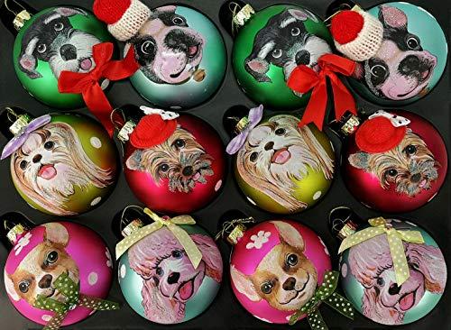 My-goodbuy24 12er Set Luxus Weihnachtskugeln Echtglas Glaskugeln Weihnachten weihnachtsdeko Christbaumkugeln Set 8 cm Hunde Mix - inkl. Display