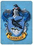 Harry Potter Metal Magnet Ravenclaw Crest Eagle Blue Wizard Magic Fridge