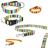 CarlCurt - Design Line: Hundehalsband & Hundeleine Im Set, Aus Strapazierfähigem Polyester, XS 22-35cm & XS 1,90m, Türkis