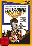 Asia Line: Kendo - Der tödliche Hammer / Vol. 17 [Limited Edition]