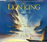 Can you feel the love tonight ('The Lion King')