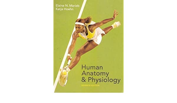 Human Anatomy and Physiology 7th (seventh) Edition by Marieb, Elaine ...