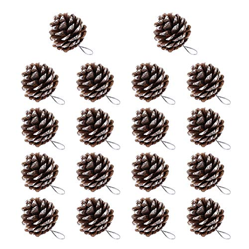 LuLyLu 18 Pezzi 1.57 Pollici Pino Cono Natale Neve Punta Naturale Coni di Pino con Corda per Albero di Natale Decorazione by