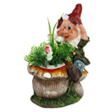 Best Gifts & Decor Garden Decors - Wonderland Dwarf Climbing Mushroom Planter With Flower Review