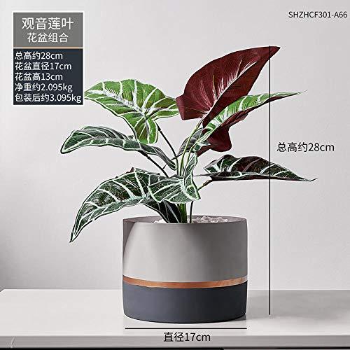 afbaby Planta de Flores Artificiales Planta Verde Adornos en macetas Piso Maceta decoración Creativa Tortuga nórdica Espalda Hoja Carne IKEA...