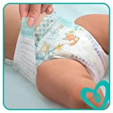 Pampers Baby-Dry Windeln, Gr. 5, 11-16 kg, Monatsbox, 1er Pack (1 x 144 Stück) - 4