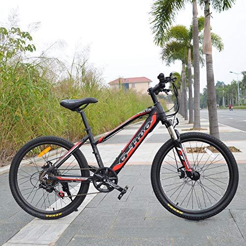 GG 24'' Vélo de Montagne Cycles à Assistance électrique, Frein à Disque, Moteur 250W sans Balai, Batterie intégrée de 36V 7,8Ah/8,7Ah/9,6Ah/10,5Ah, Cadre en Alliage d'aluminium (Noir, 250W 36V7.8Ah)