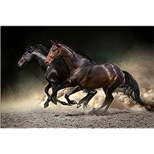 Cuadro sobre lienzo 90 x 60 cm: Mustang gallop de Editors Choice - cuadro terminado, cuadro sobre bastidor, lámina terminada sobre lienzo auténtico, impresión en lienzo