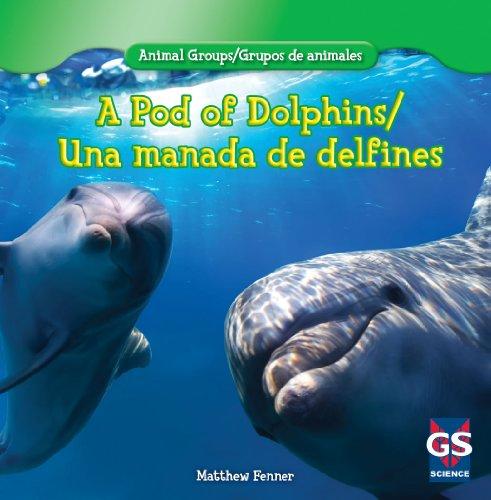 A Pod of Dolphins/una manada de delfines (Animal Groups/grupos de animales)