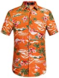 SSLR Herren Hawaiihemd Kurzarm Baumwolle Hemd Flamingos gedruckt Aloha Shirt für Strand Freizeit Reise (Large, Orange)
