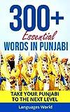 Learn Punjabi: 300+ Essential Words In Punjabi - Learn Words Spoken In Everyday Punjab (Speak Punjabi, Punjab, Fluent, Punjabi Language): Forget pointless phrases, Improve your vocabulary