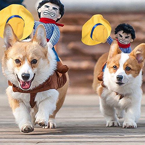 Petacc Haustier-Kostüm Lustige Hund Cowboy-Ritter-Kleid-Welpen-Reiter-Kleidung