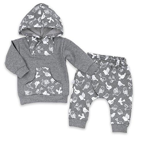 Baby Set Kapuzenpullover + Hose grau weiß | Motiv: Vogel | Marke: Koala Baby | Babyset 2 Teile mit Vogelmotiv für Neugeborene & Kleinkinder | Größe: 6 Monate (68)
