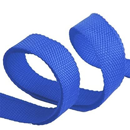 Katomi Dog Pet Puppy Training Obedience Lead Leash (1.8m*2cm, blue) 4