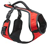 Petsafe Dog Leash For Large Dogs - Best Reviews Guide