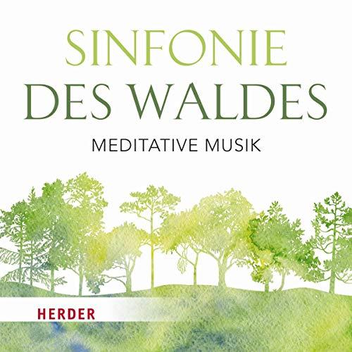 Meditative Musik ()
