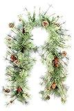 Bewundert by Nature gxt3908-natural Weihnachten Glitzer PVC Girlande Tannenzapfen, grün