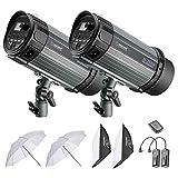 Neewer 500W Studioblitz Röhrenblitz Beleuchtungs-Installationssatz: Monolicht, Softbox, RT-16 Funkauslöser und Empfänger, 33 Zoll Studioschirm für Video und Portrait Aufnahmen (N-250W)