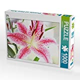 CALVENDO 7695826 Puzzle, Multicolor