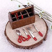 MAJGLGE - Caja de Madera en Miniatura con Juego de Herramientas de Metal para decoración de