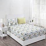 Maspar Superfine 210 TC Cotton King Bedsheet with 2 Pillow Covers - Geometric, Multi Pastel