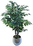 Maia Shop Ficus Stämme aus den besten Materialien, ideal für Dekoration zu Hause, künstlicher Baum (105 cm) 105 cm Ficus
