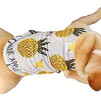 &liyanan Vêtements pour Chiens, T-Shirt d'été pour Petits Chiens Protection Contre Le Soleil Chemise de Chien Chien Mignon Gilet Robe Tenue Vêtements de Chien pour des Vacances hawaïennes