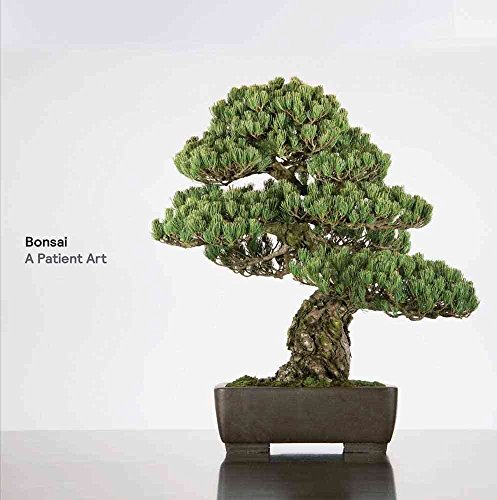 Descargar Libro [(Bonsai : A Patient Art)] [By (author) Susumu Nakamura ] published on (March, 2013) de Susumu Nakamura