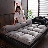 Cotone Spesso Non-Scivolare Sleeping Pad,Trapuntato Pieghevole Roll Up Materasso Tradizionale Giapponese Materassi Letto Futon Tatami Tappetino A 100x200cm 39x79inch