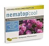 Nematop cool Nematoden zur Bekämpfung des Dickmaulrüsslers 10 Mio. für 20 m²