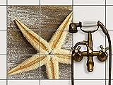 creatisto Fliesentattoo Dekosticker | Fliesen-Aufkleber Folie Sticker selbstklebend Küche renovieren Bad Küchen Ideen | 20x15 cm Design Motiv Starfish - 6 Stück