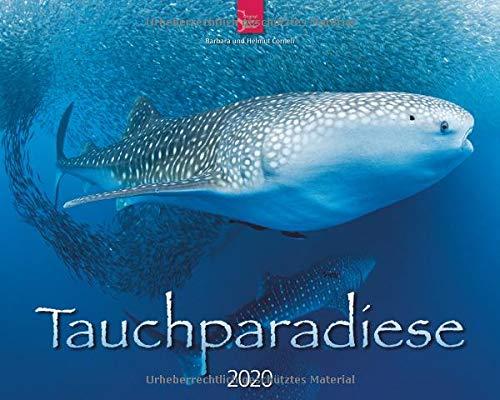 Tauchparadiese: Original Stürtz-Kalender 2020 - Großformat-Kalender 60 x 48 cm