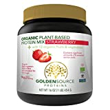 Best Protein Sources - Golden Source Proteins Organic Plant-based Protein Powder, Strawberry Review