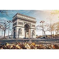 Oedim Tableaux en Toile Canevas Impression Numérique Urabain La Place de l'Étoile, Arc de Triomphe,Champs-Élysées,Paris| Cadre en Toile de 100 X 60 CM| Toile Encadrée légère, Résistante et Économique
